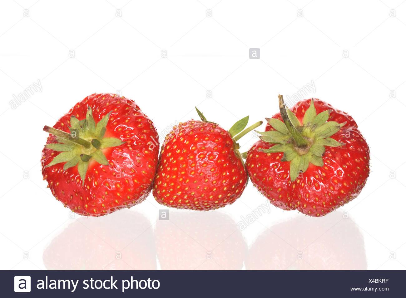Erdbeeren auf weißem Stockbild