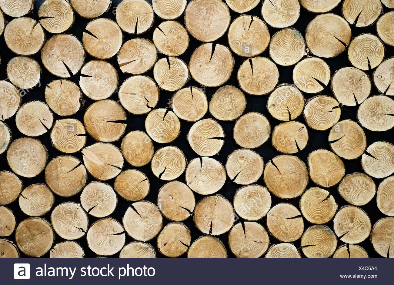 Gestapelte Baumscheiben Gestapelt Baum Scheiben Stockbild