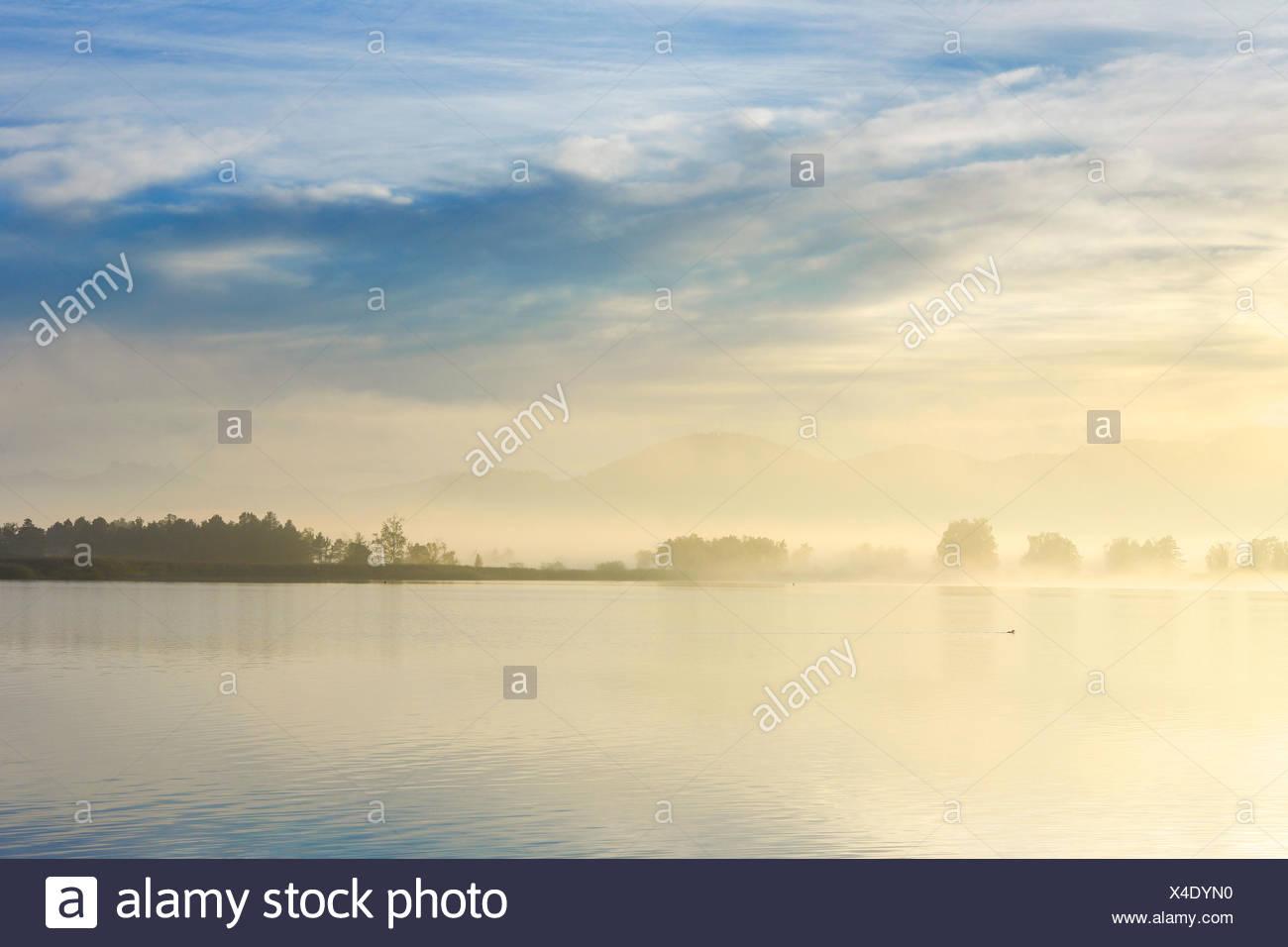 See-Pfäffikon in Morgen Stimmung, Schweiz, Zuercher Oberland Stockbild