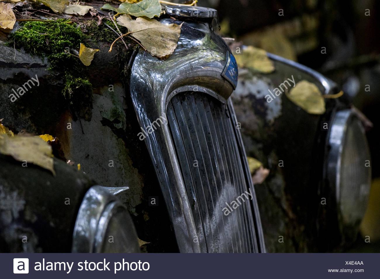 Bentley oldtimer Stockbild