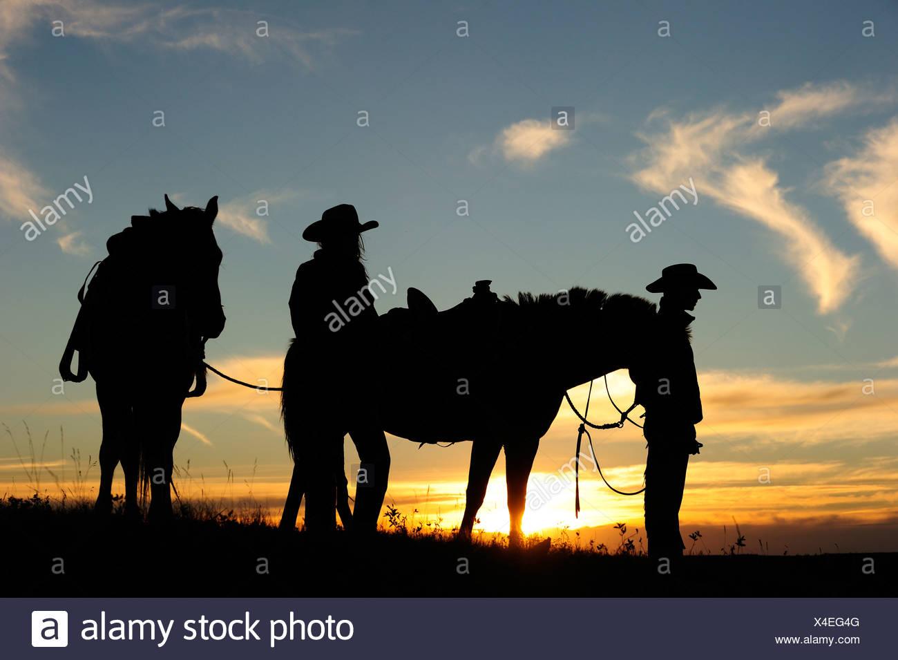 Cowgirl und Cowboy mit Pferden bei Sonnenuntergang, Saskatchewan, Kanada, Nordamerika Stockfoto