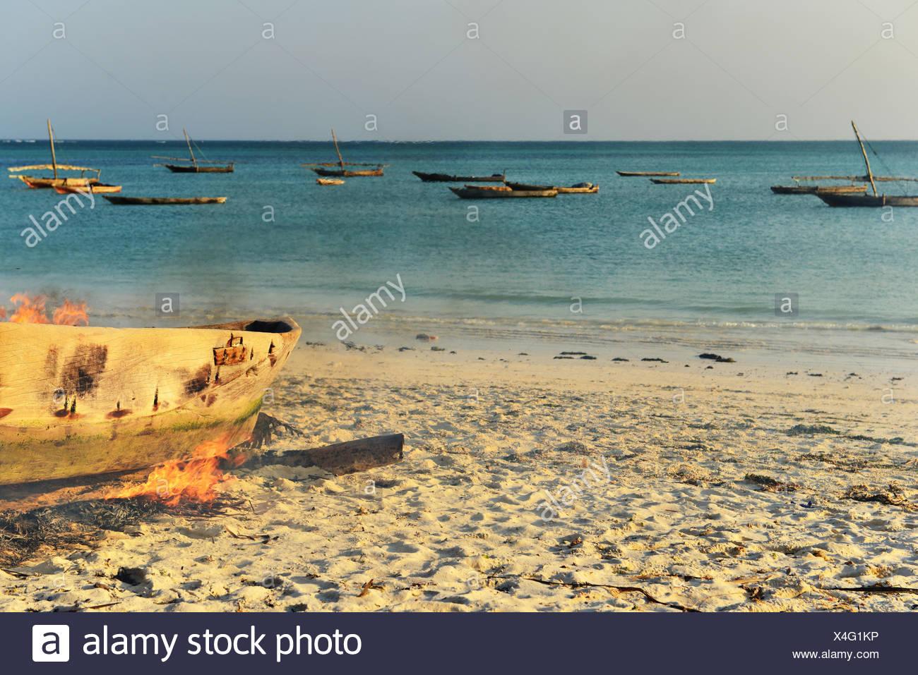 Algen Brennen auf einem Boot es zu verhärten, nungwi, Sansibar, Tansania Stockbild