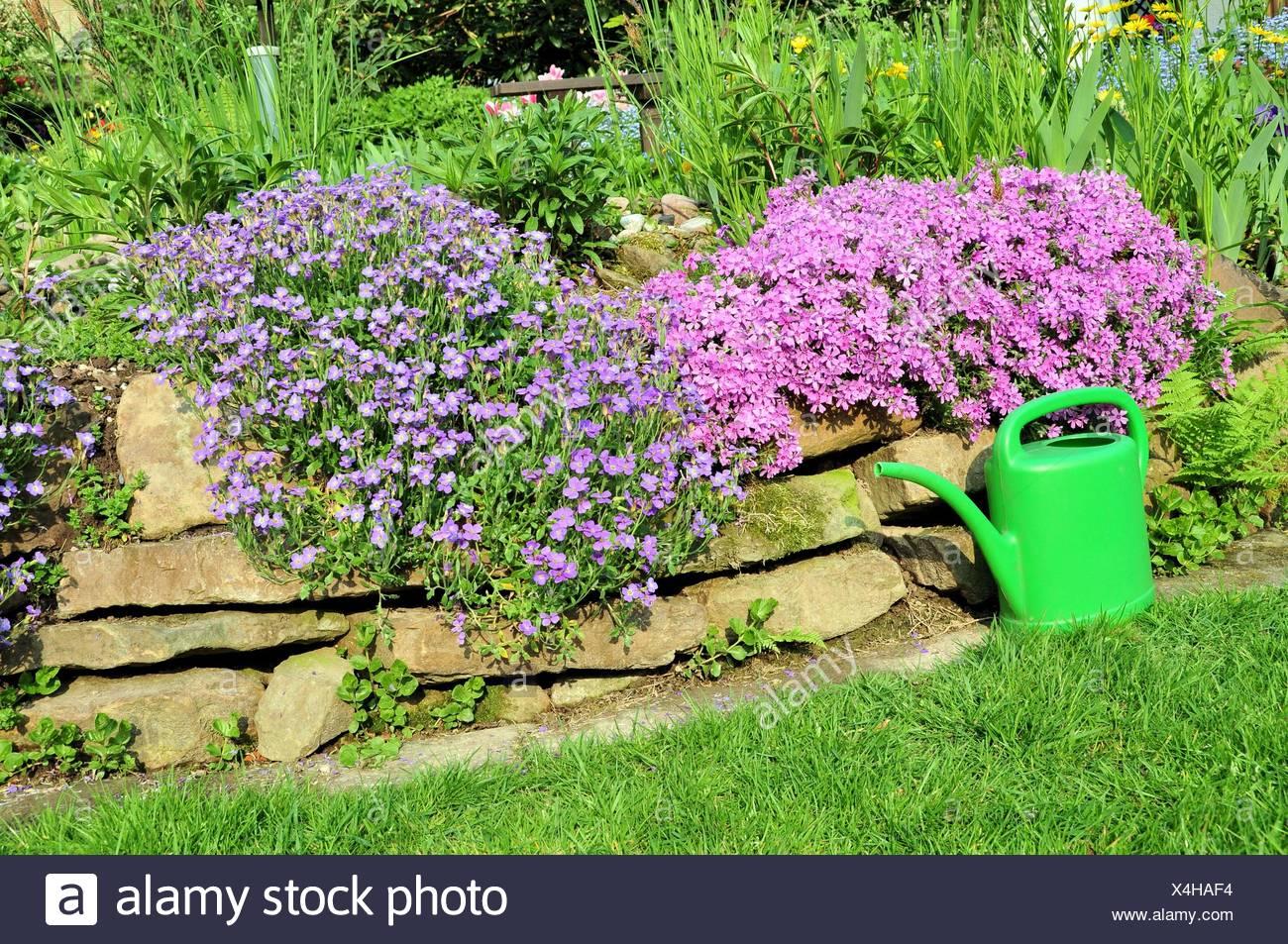 Gießkanne Garten Stockfoto Bild 278205960 Alamy