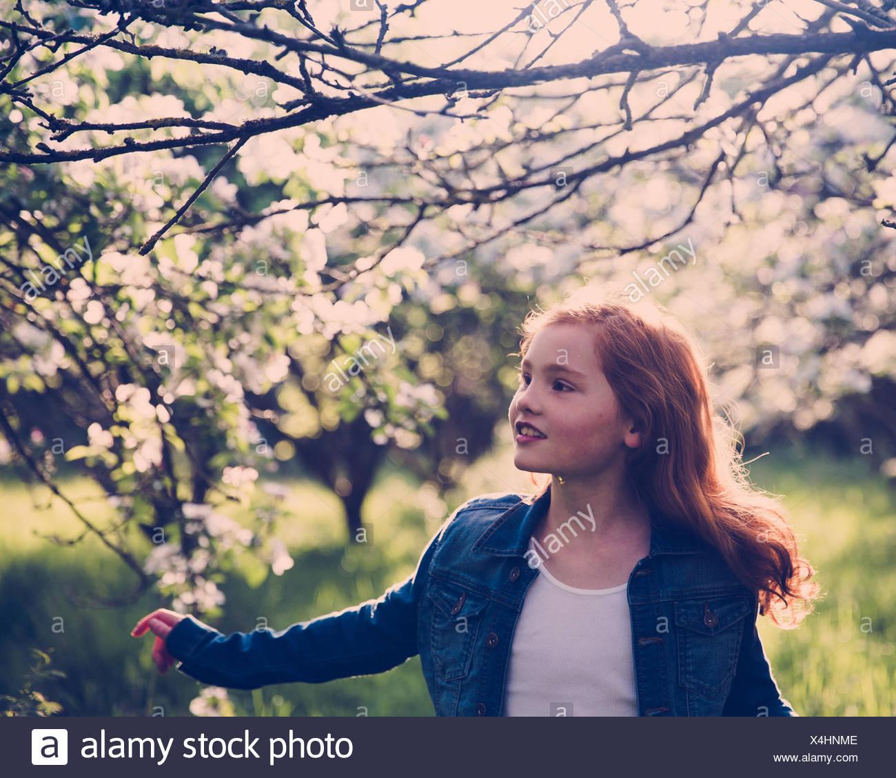 Mädchen zu Fuß durch Obstgarten in Blüte Stockbild