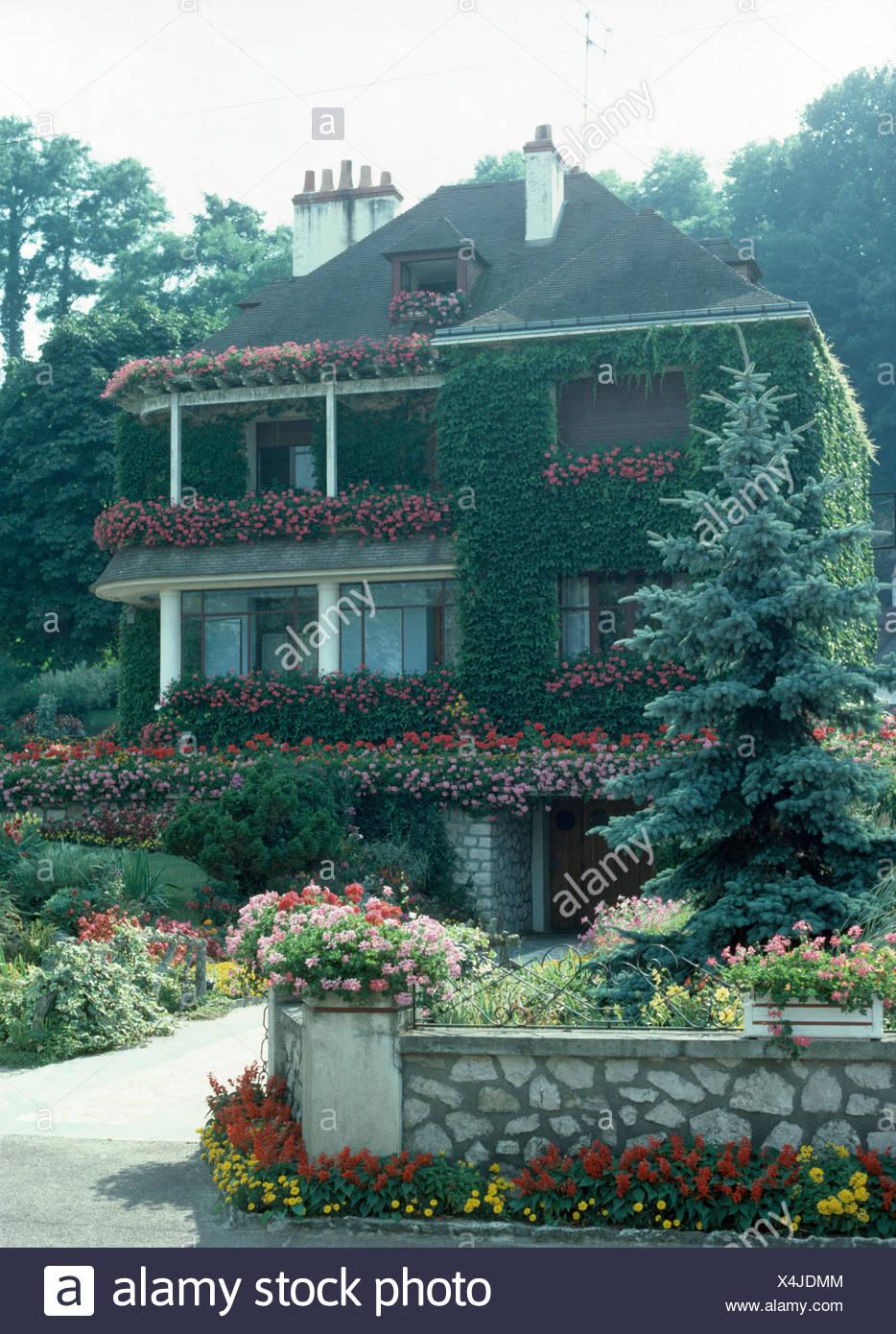 Fassade Eines Franzosischen Landhauses Mit Uppig Bluhenden Geranien