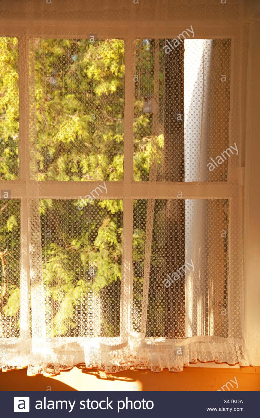 Fensterbank Fenster Spiegel Fenster Vorhang Stockfoto Bild