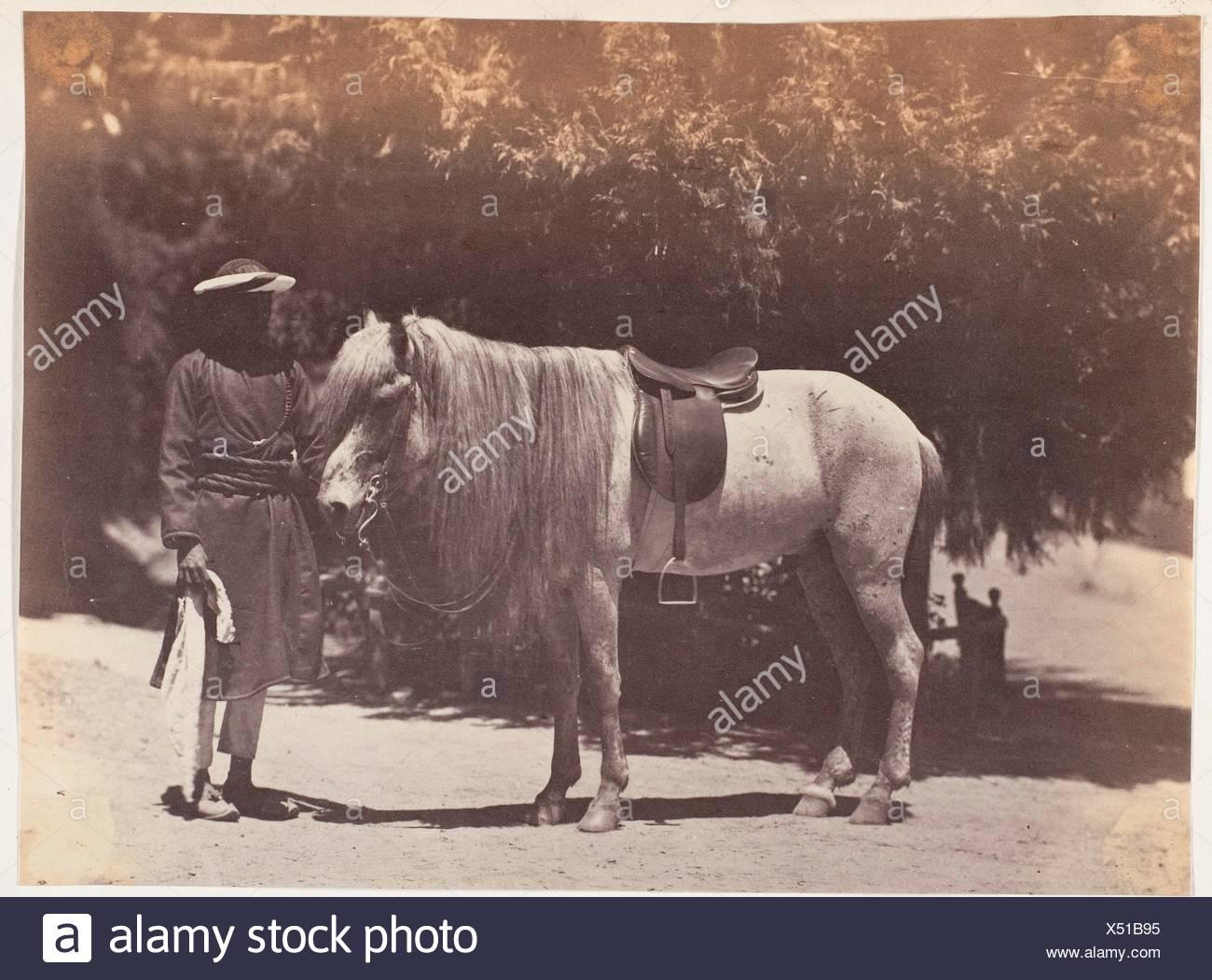[Lord Canning Hill Pony]. Artist: Unbekannt; Datum: 1858-61; Medium: Eiweiß Silber drucken; Abmessungen: Bild: 19,7 x 14,6 cm (7 3/4 x 5 3/4 in.); Stockbild