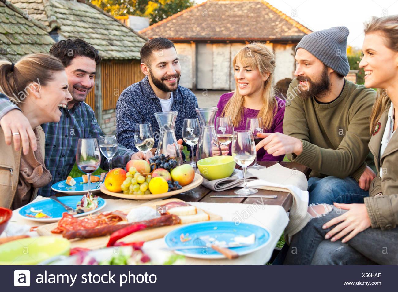 Gruppe von Freunden trinken Wein auf Gartenparty Stockbild
