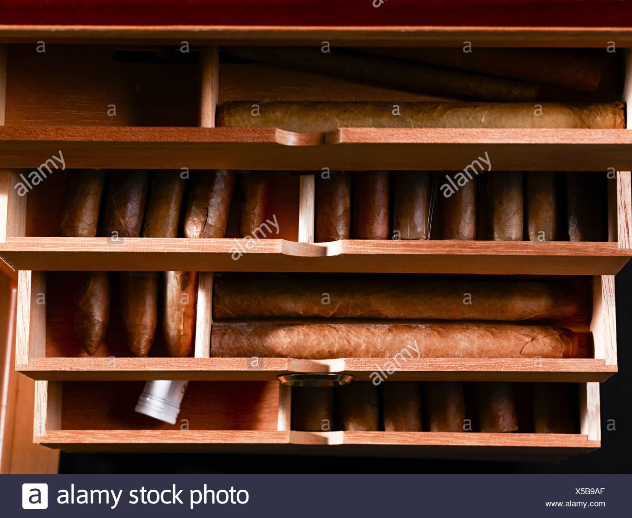 Zigarren in box Stockbild