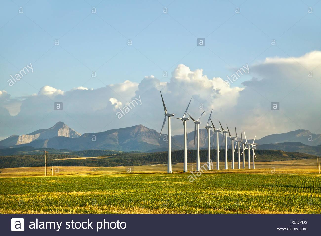 Windkraftanlagen, Pincher Creek, Alberta, Kanada Stockbild