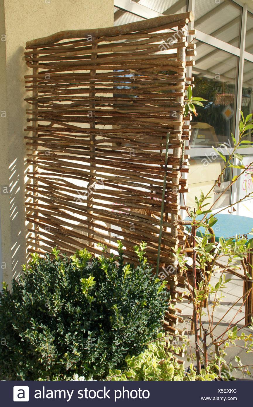 Flechtwerk mit Haselnuss-Zweige Stockbild