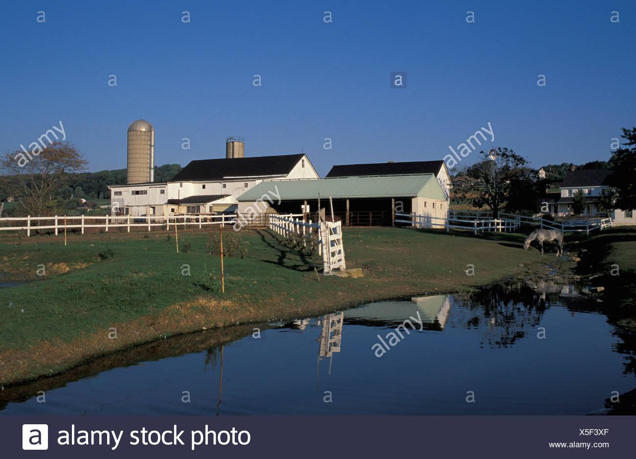 Alte Vogel altmodisch amische Landwirte Teich Bauernhof Landwirtschaft Religion Christentum Dutch Country in Hand Pennsylv Stockbild