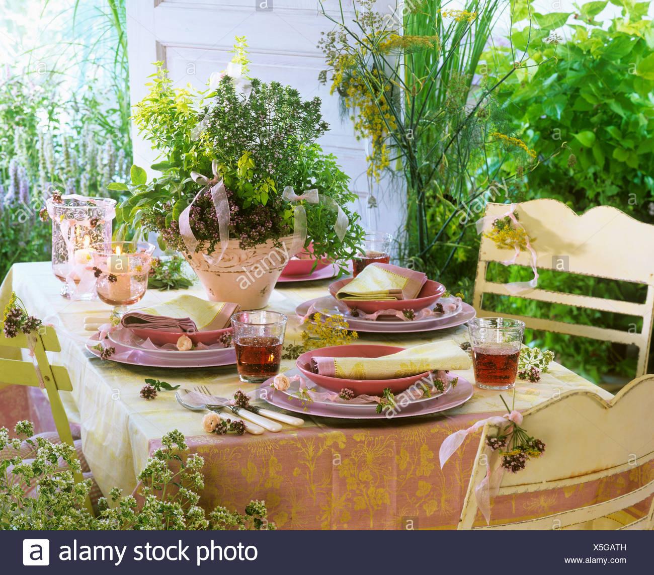 Bluhende Krauter Aus Dem Garten Dekorieren Einen Gedeckten Tisch