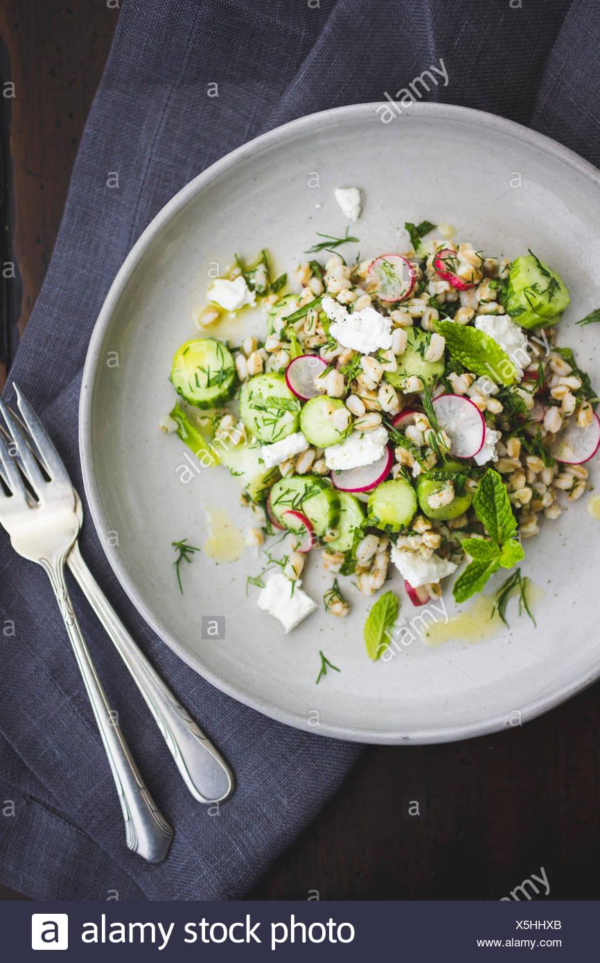 Dinkel-Salat mit Feta, Gurken, Radieschen und Dill auf einem weißen Teller. Stockfoto