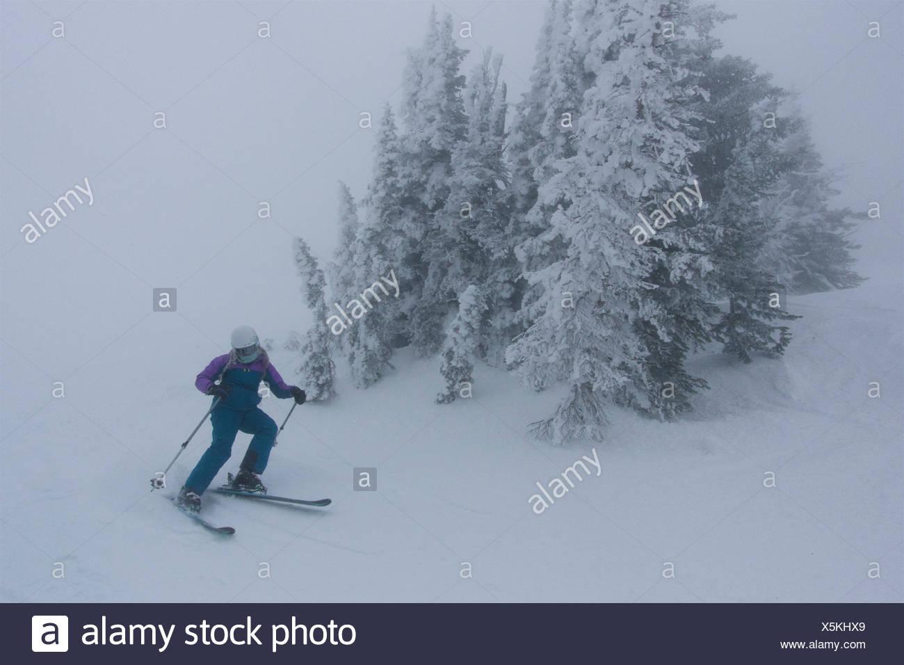 Ein jugendlich Mädchen Skifahren in nebligen, whiteout Bedingungen in der Nähe von Rauhreif bedeckt Koniferen. Stockbild
