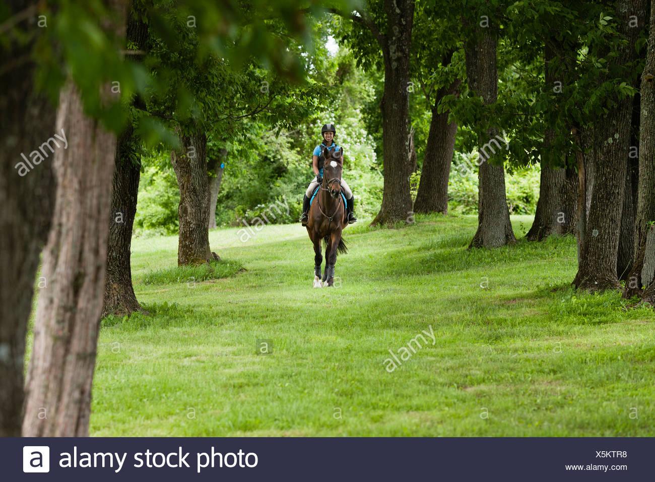 Junge Frau auf Pferd durch Wald Stockbild