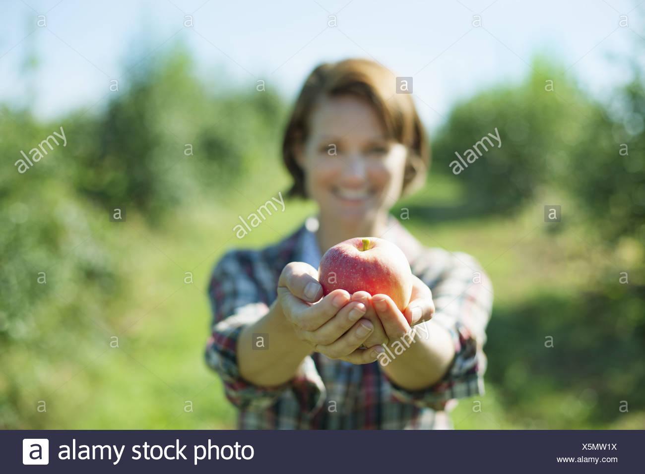 Woodstock, New York USA Frau im karierten Hemd hält Apfel schalenförmige Hände Stockbild