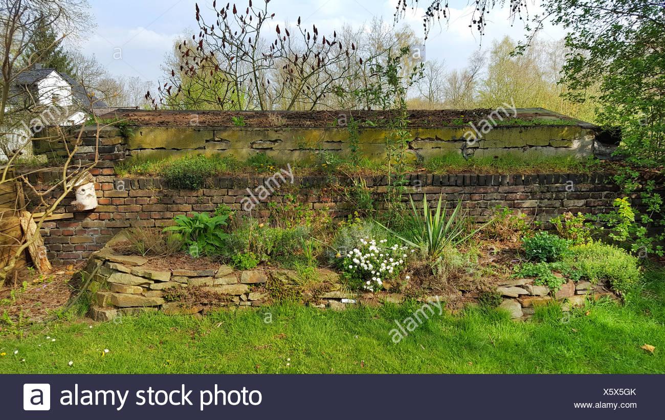 Hochbeet Mit Natursteinmauer Im Fruehling Deutschland