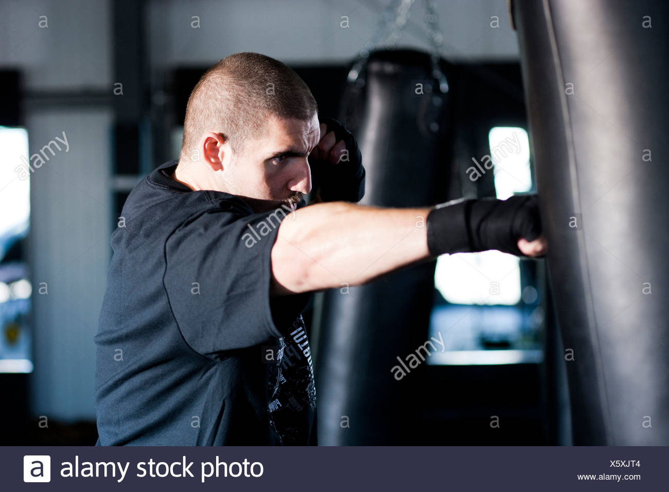USA-Utah, American Fork, Boxer Stanz Boxsack Stockbild