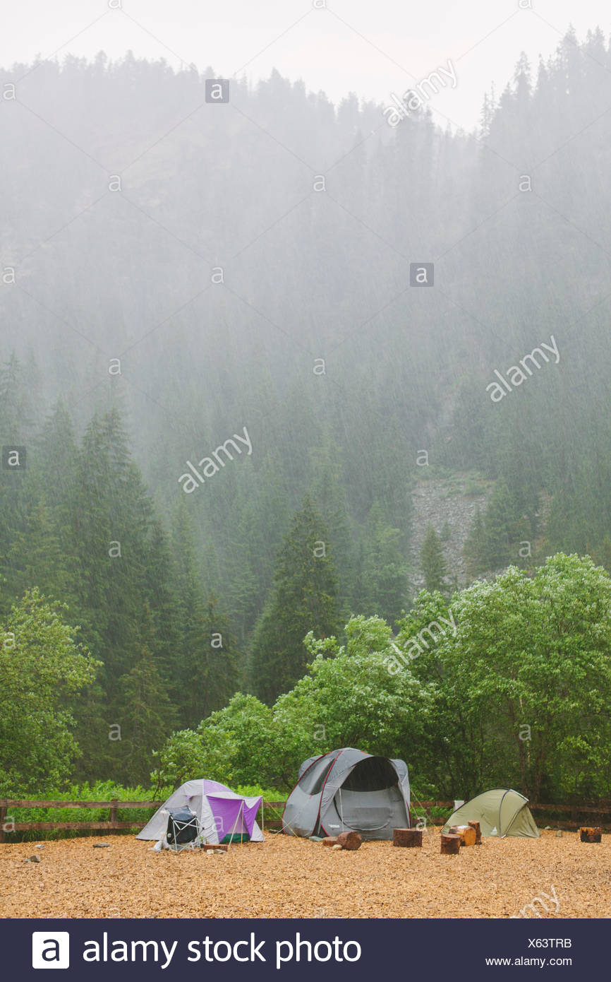Schweiz, Ausserferrera, drei Zelte am Campingplatz am Fuße des nebligen, bewaldeten Hügel Stockbild
