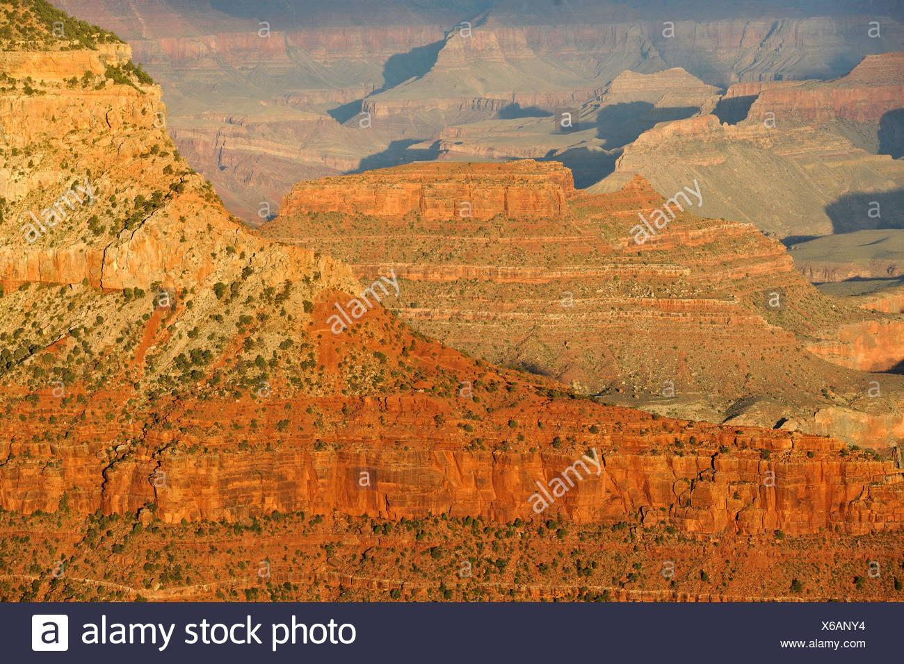 Bei Sonnenuntergang von Yavapai Point Lookout in Richtung Pattie Butte, Bright Angel Canyon, Abendlicht, Grand Canyon National Park anzeigen Stockbild