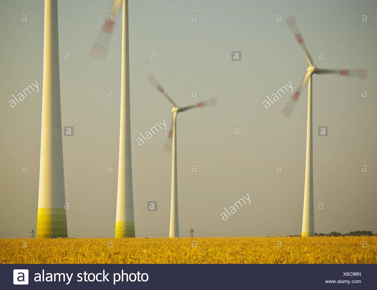 Deutschland, Windkraftanlage, Windkraftanlagen, Feld, Stockbild
