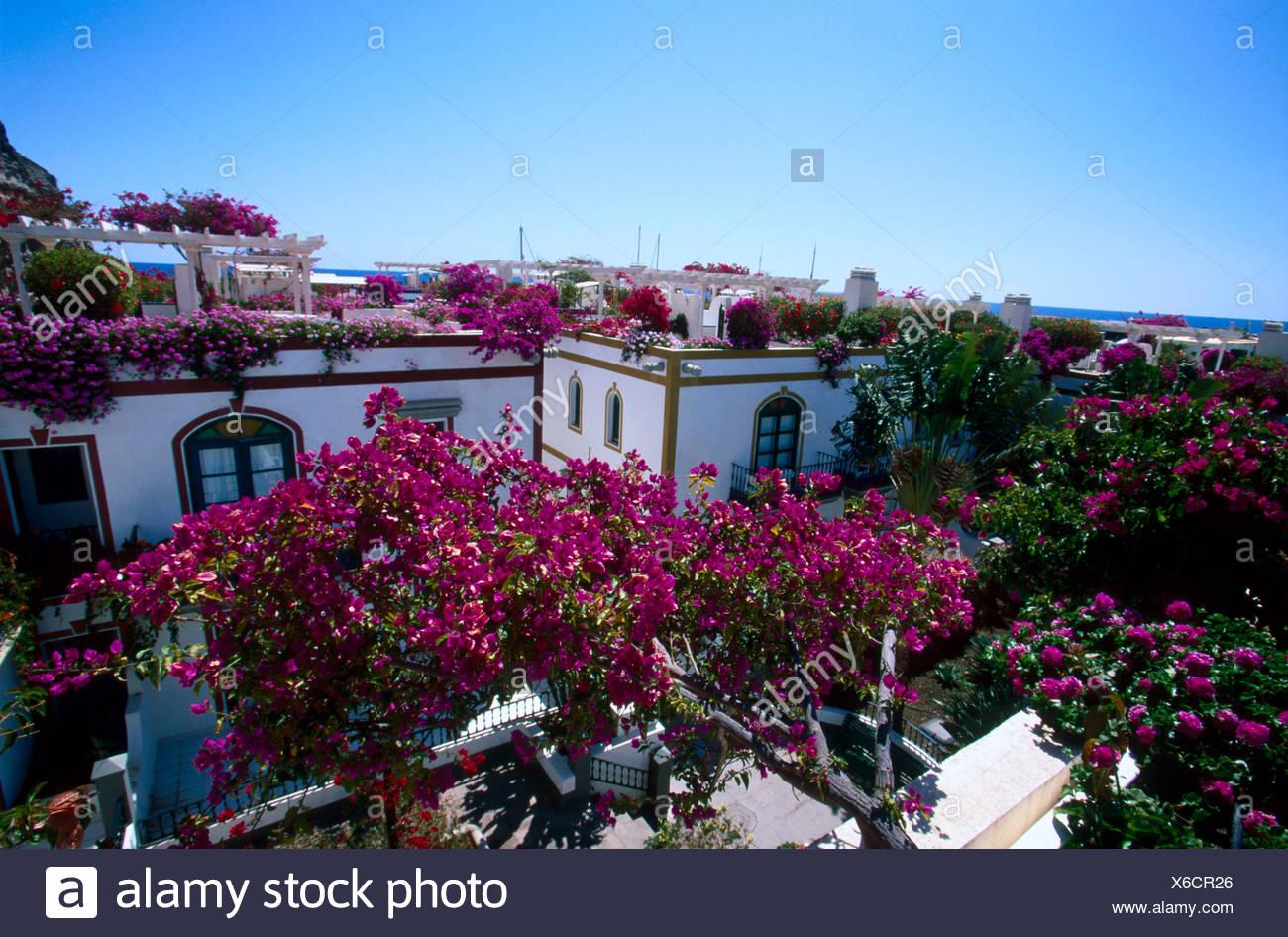 Erhöhte Ansicht des Hotel, Kanaren, Spanien, Europa Stockfoto