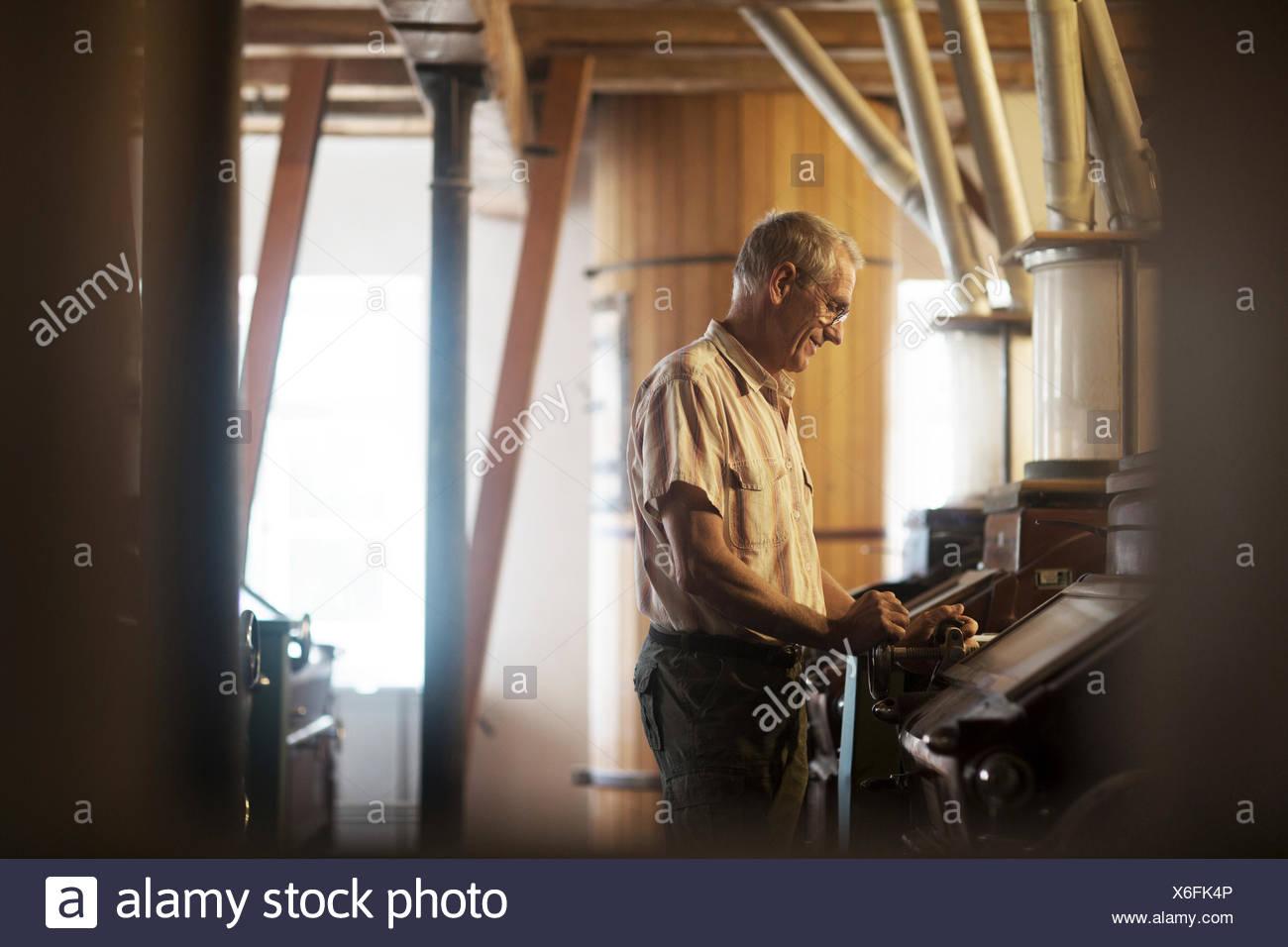 Männliche Miller Maschine bei Weizen-Mühle in Betrieb Stockbild