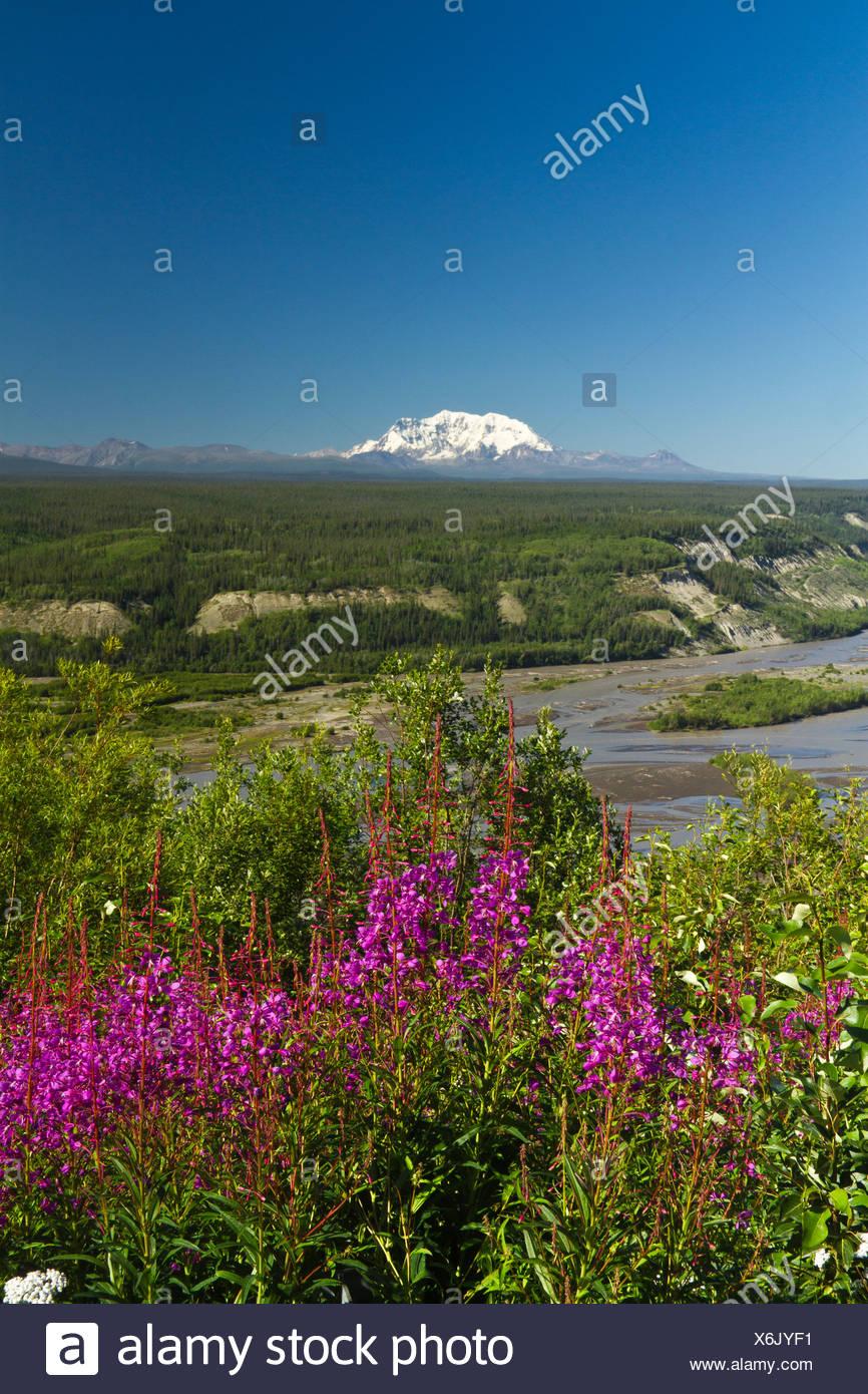 Mt Wrangell Stockfotos Und Bilder Kaufen Alamy