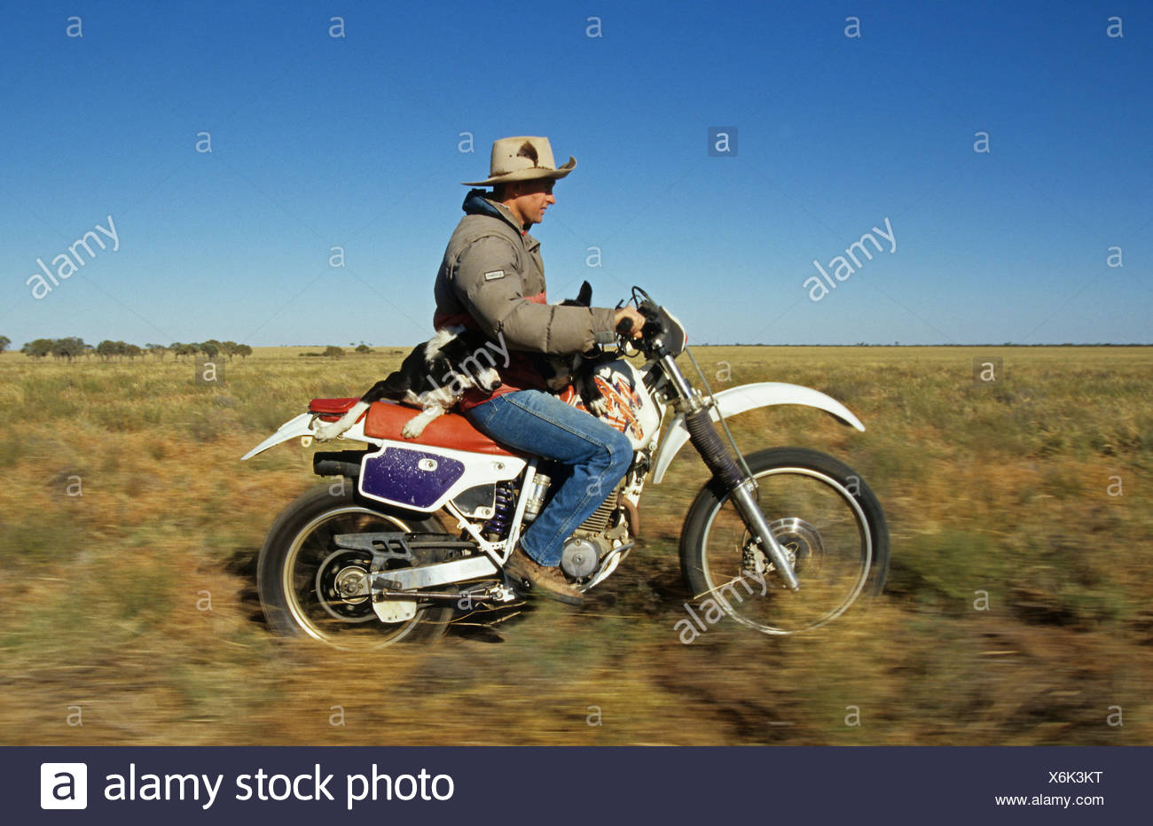 Motorrad aus Australien Halo erreichen Matchmaking die meisten Kredite