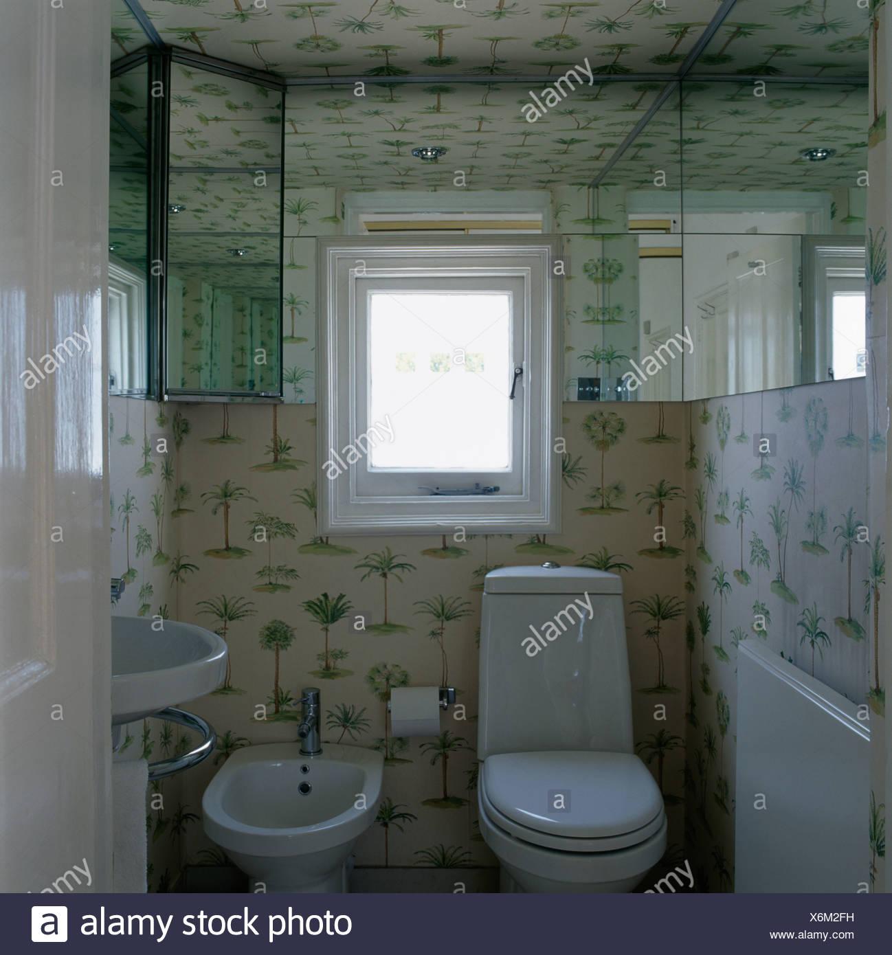 Tur Offen Grun Weiss Gemusterten Tapeten Im Kleinen Badezimmer Mit