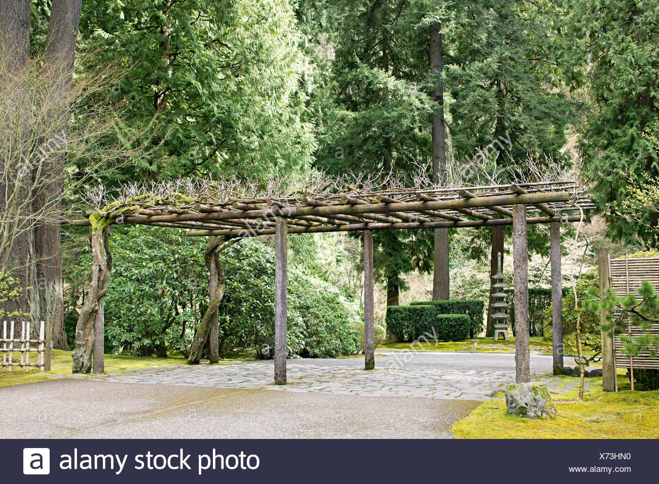 Garten Pergola Pagode Japanische Struktur Baum Bäume Garten Stein