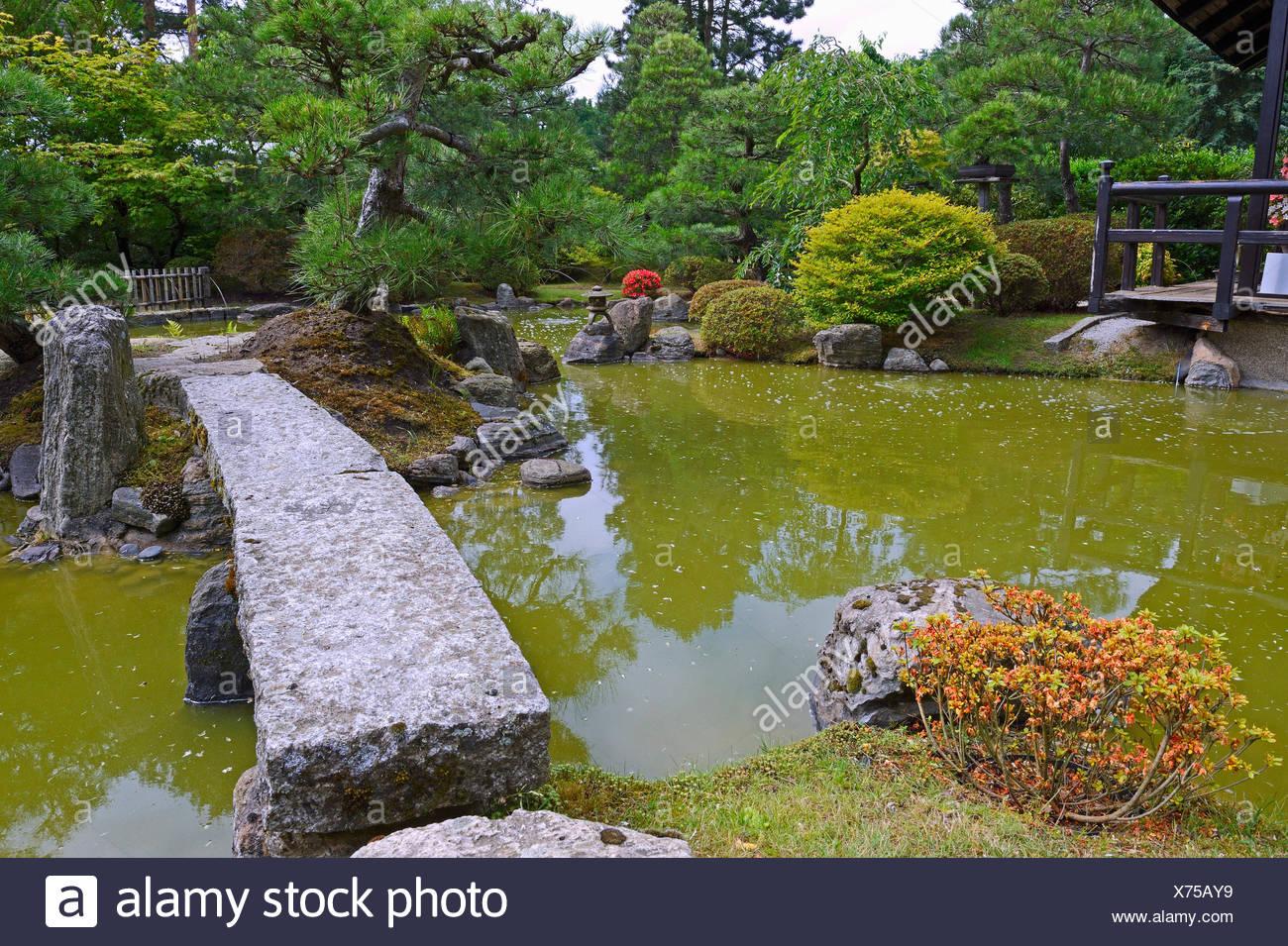 Typischer Gartenlandschaft Garten Mit Steindekorationen Und Koiteich |  Typisch Japanische Garten Mit Stein Dekoration Und Koi