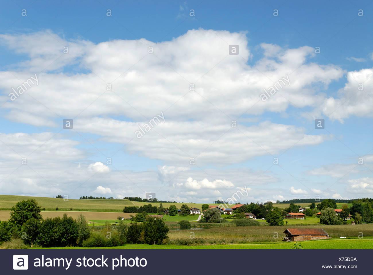 Moränenlandschaft in der Nähe von Truchtlaching, Chiemgau, Oberbayern, Deutschland, Europa Stockbild