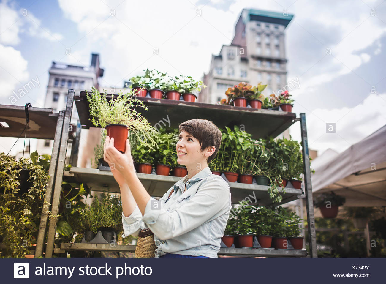 Frau shopping im Pflanzenmarkt Stockbild