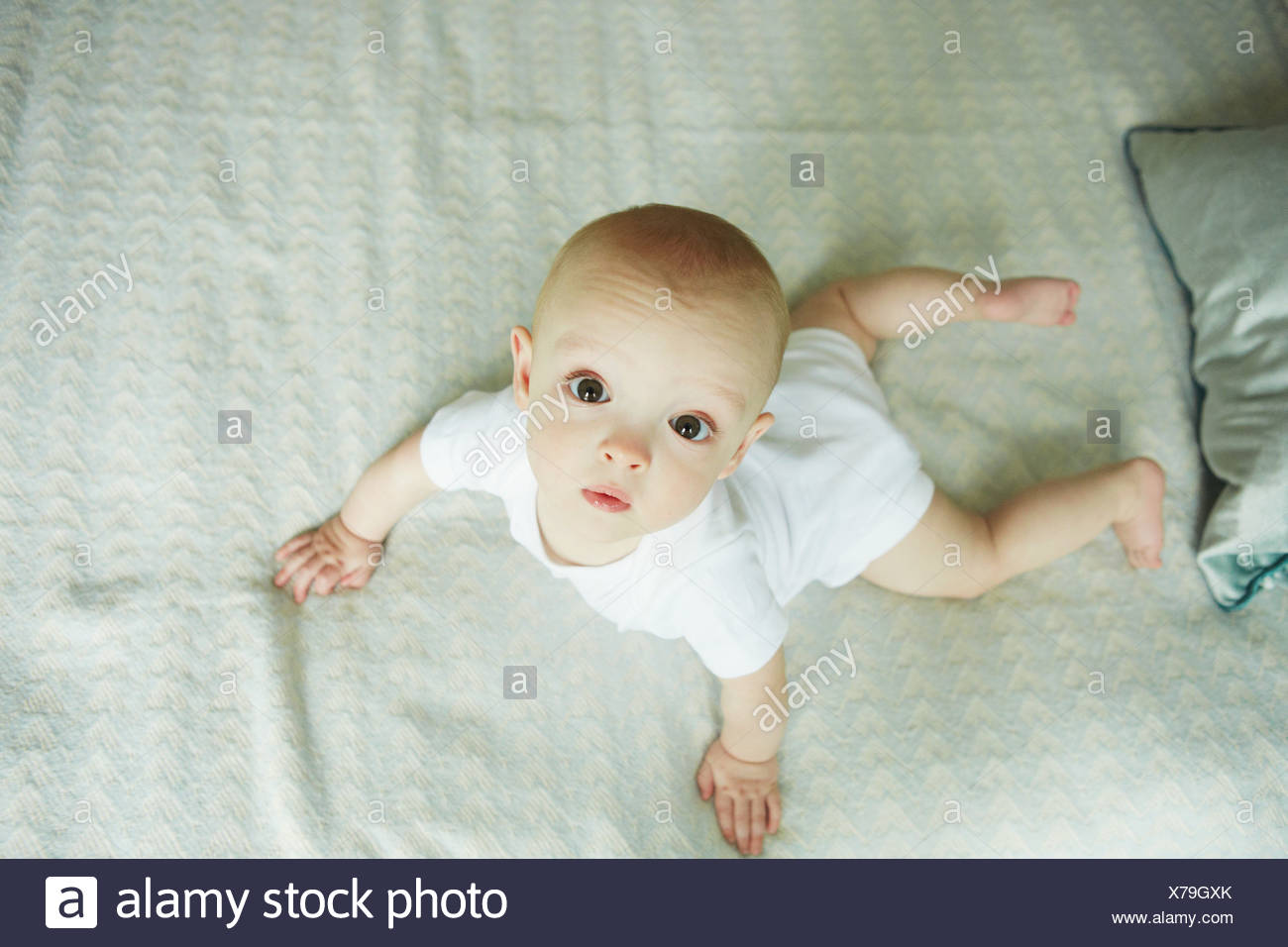 Baby Boy auf Bett kriechen Stockbild