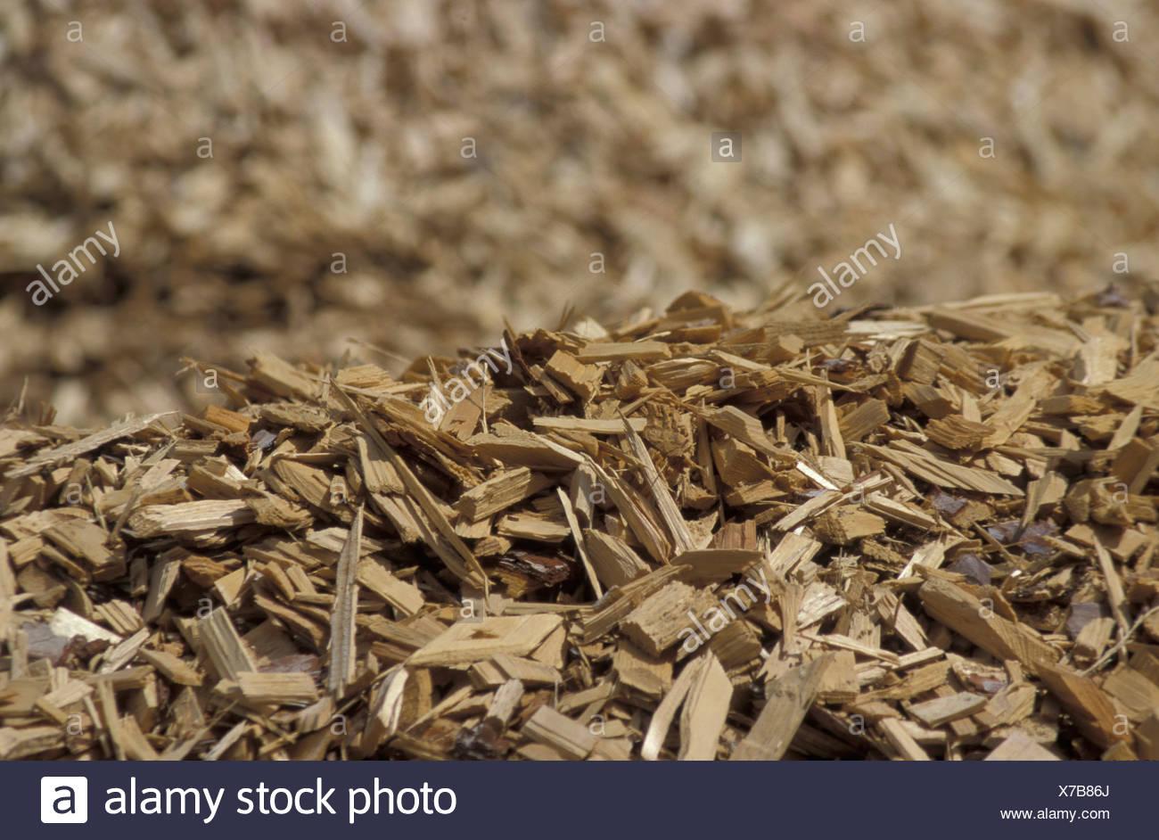 Haufen von abgebrochenen Holz Stockbild
