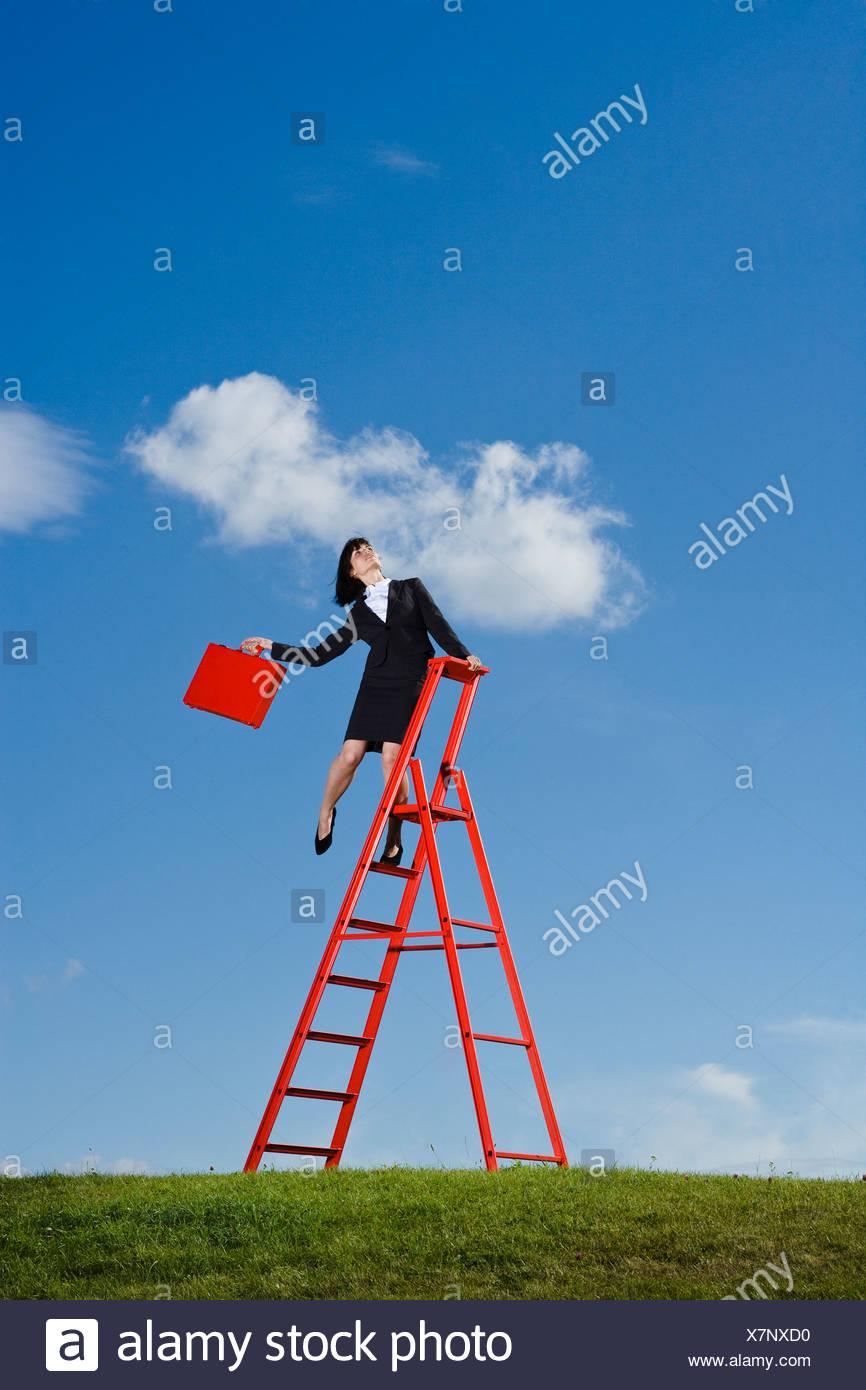 Geschäftsfrau mit roten Aktentasche balancieren auf roten Leiter in Wiese Stockbild