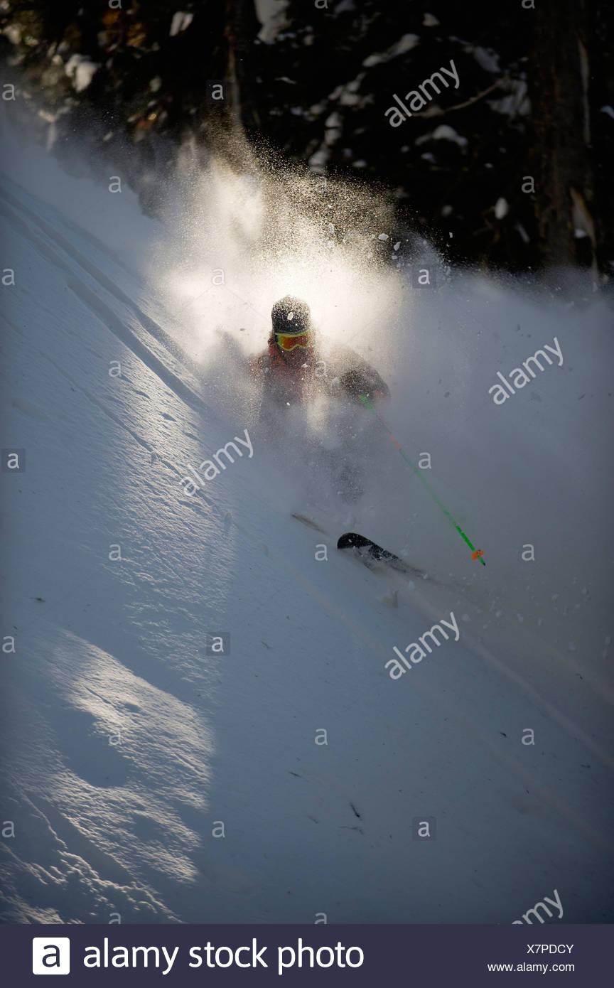 Backcountry Skifahrer wird im Billlowing Wolke von Schnee begraben, als er die Bäume der Selkirk Mountains, Kanada Ski. (Hintergrundbeleuchtung) Stockbild