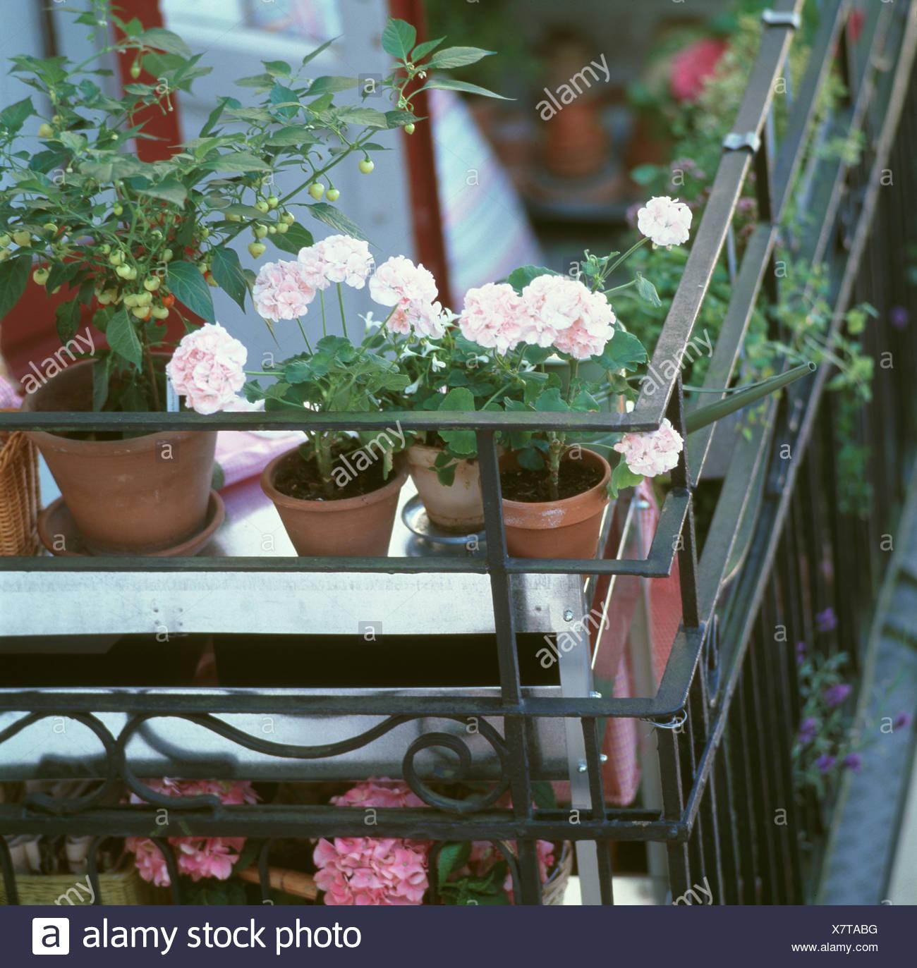 Lassen Sie Der Balkon Ein Krautergarten Werden Offnen Sie Die