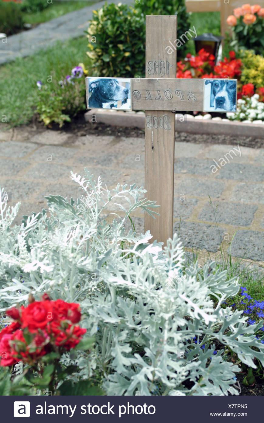 Berlin Hunde Grab In Einem Tierfriedhof Stockfoto Bild 280213169
