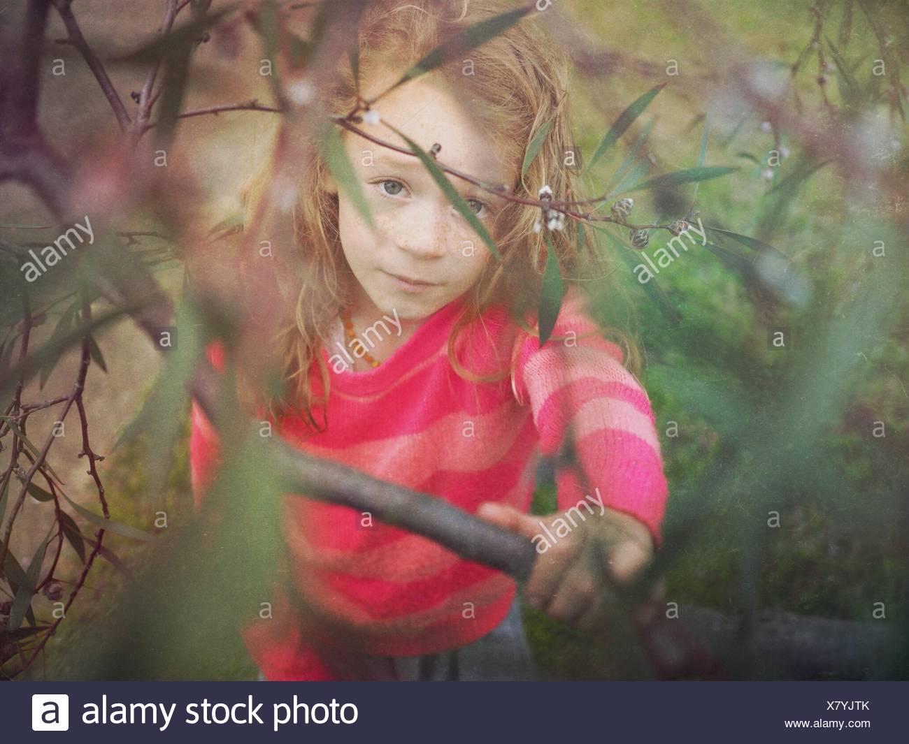 Mädchen durch Äste eines Baumes betrachtet Stockbild