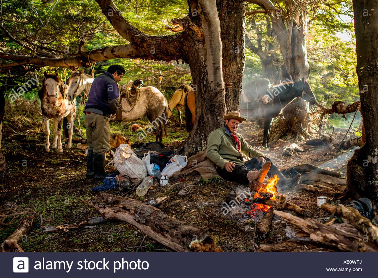 Bagualeros, Cowboys, die wilden Tiere erfassen frühstücken und Pferde auf einer Reise zu laden. Stockfoto