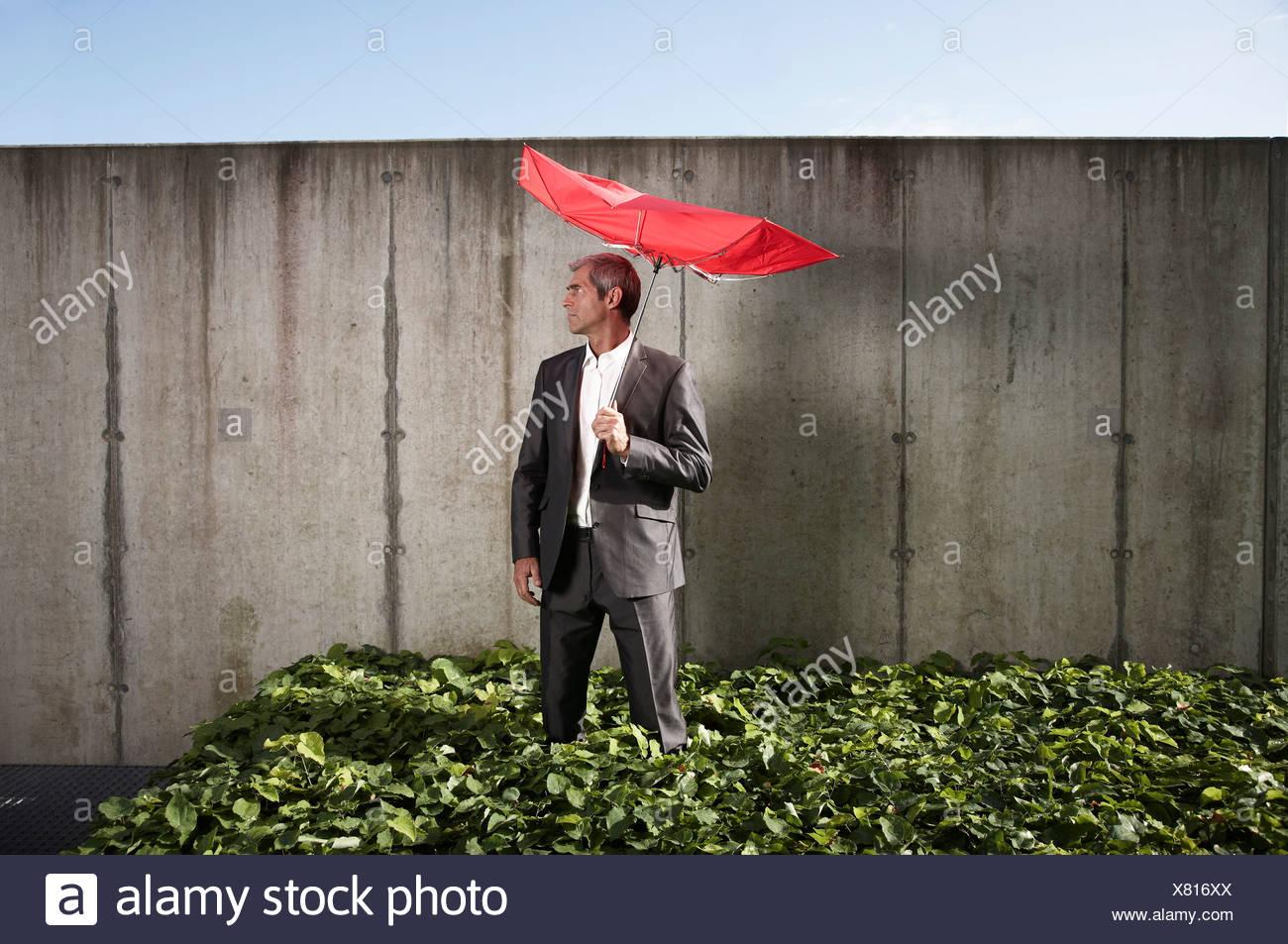 Geschäftsmann mit beschädigten roten Regenschirm Stockbild