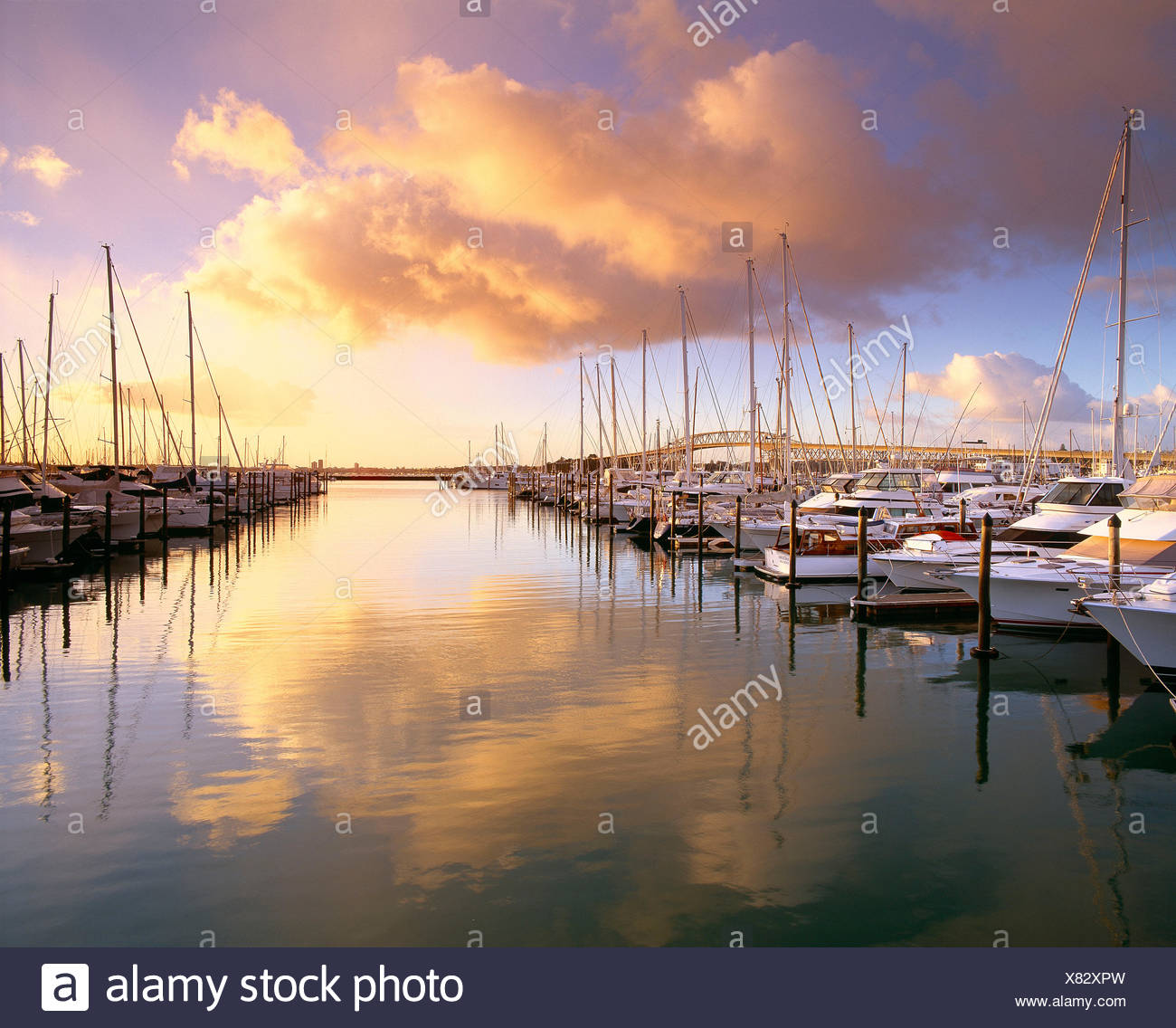 Neuseeland. Auckland. Yachten in der Marina bei Sonnenaufgang. Stockbild