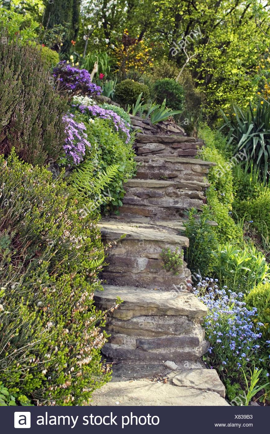 eine steintreppe, garten stockfoto, bild: 280356359 - alamy