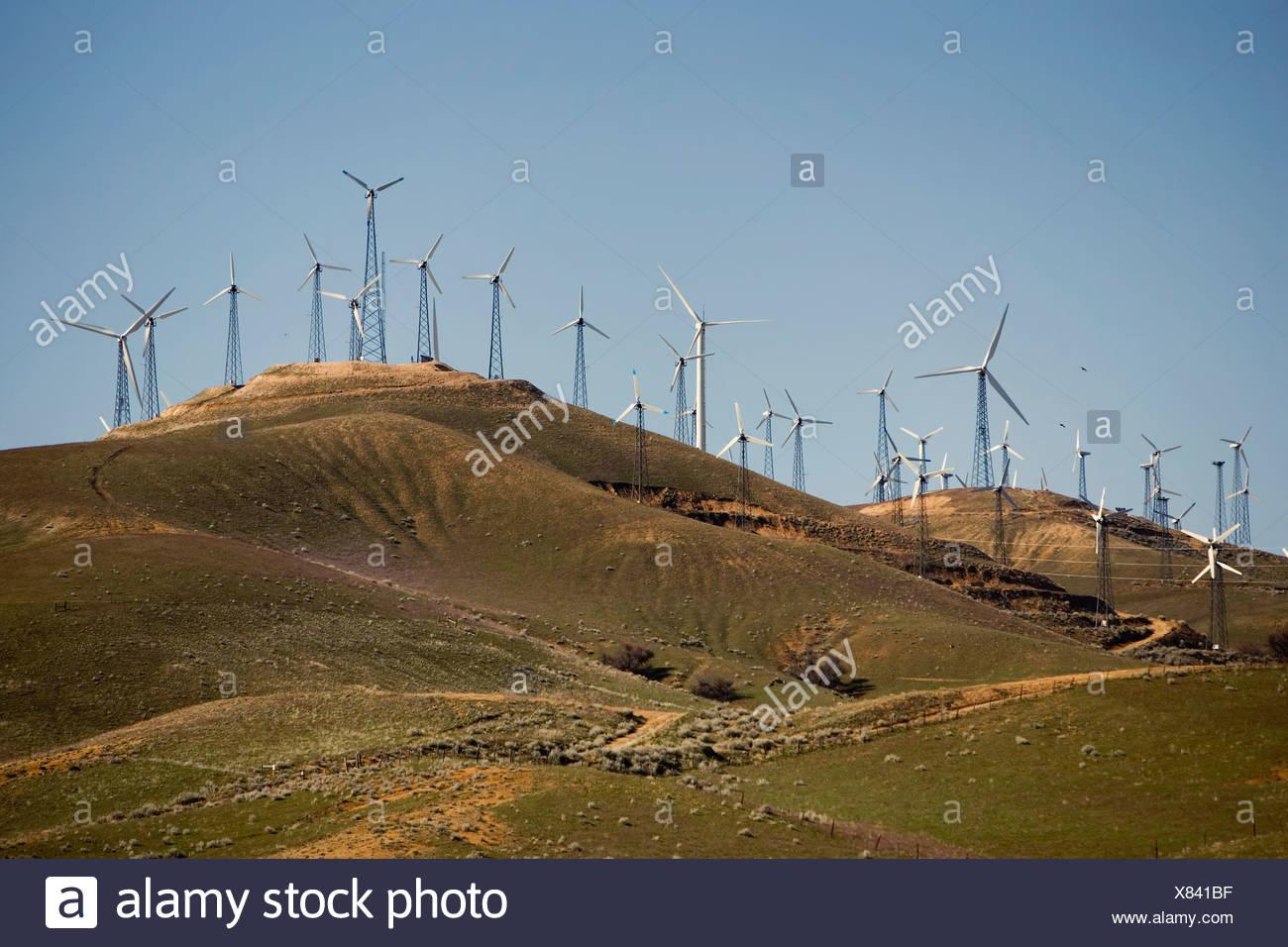 Windkraftanlagen zur Stromerzeugung Stockbild