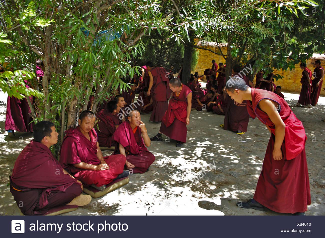 Die berühmte discussin Mönche im Kloster Ganden (4300m) in der Nähe von Lhasa, Tibet Stockbild
