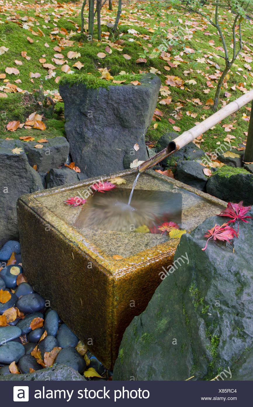 Garten, Brunnen, Bambus, japanische, Saison, Wasser, Herbst, Herbst ...