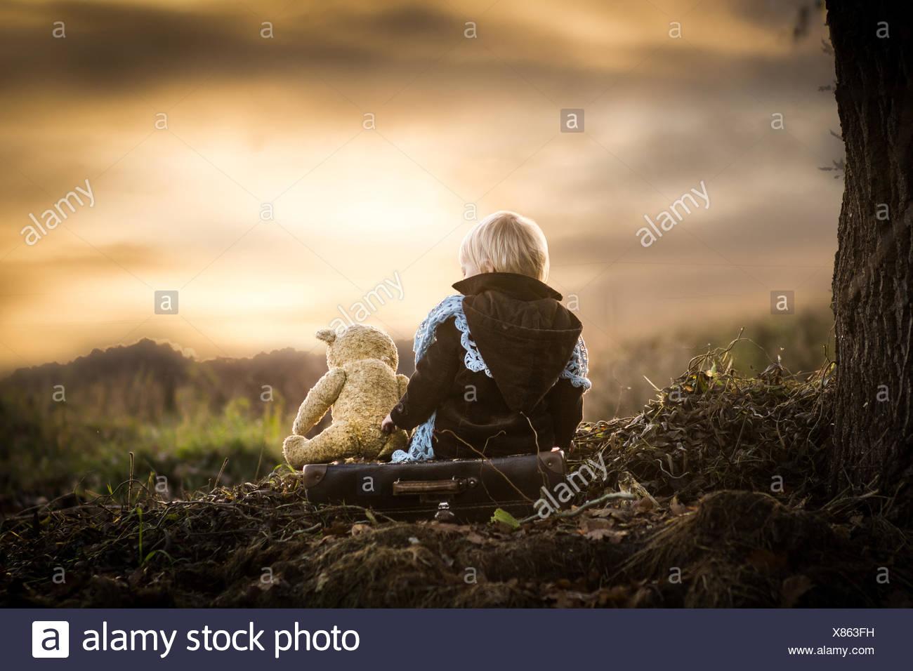 Polen, Rückansicht der Junge sitzt auf Baumwurzeln mit Teddybär Stockbild